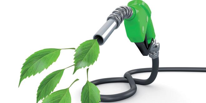 Con investigaciones por antidumping de Estados Unidos en la mira, las exportaciones de biodiesel crecieron 59% durante el primer cuatrimestre.