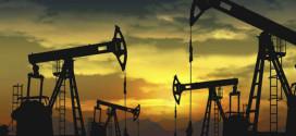 YPF y PAE extrajeron 63% del crudo en el primer semestre, y el 33% de las petroleras produjo muy poco en 2016