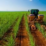 interna_agroindustrial_1_2