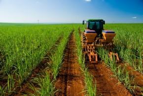 Una compañía agroindustrial argentina se asoció con una empresa inglesa para operar en energías renovables
