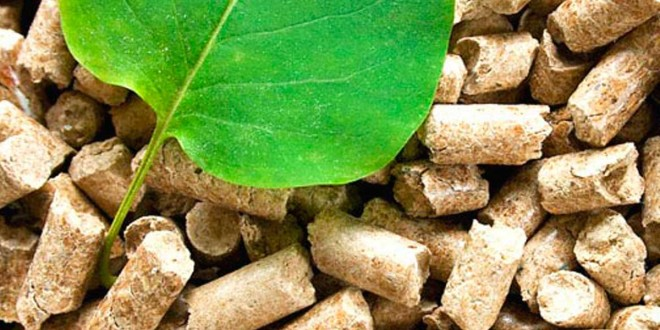 El INTI realiza el primer ensayo a escala industrial para obtener combustible a partir de desechos de la caña de azúcar