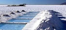 Pese a los estímulos del Gobierno y el boom del litio, la minería sigue estancada